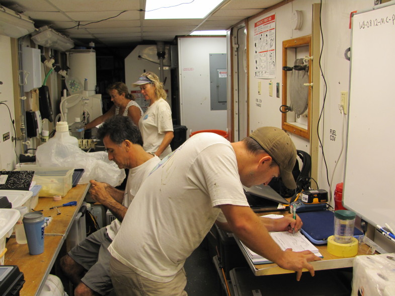 From top to bottom: C-IMAGE researchers Patty Smukall (USF Teacher-At-Sea), Theresa Greely, David Hastings, and Patrick Schwing process samples in the onboard lab lof the RV Weatherbird II. (Photo: David Levin)